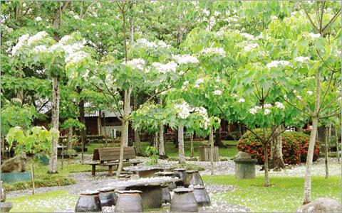 南投-牛耳藝術渡假村雙人優惠組合《純入園x2+下午茶x2》-春節不適用-預約